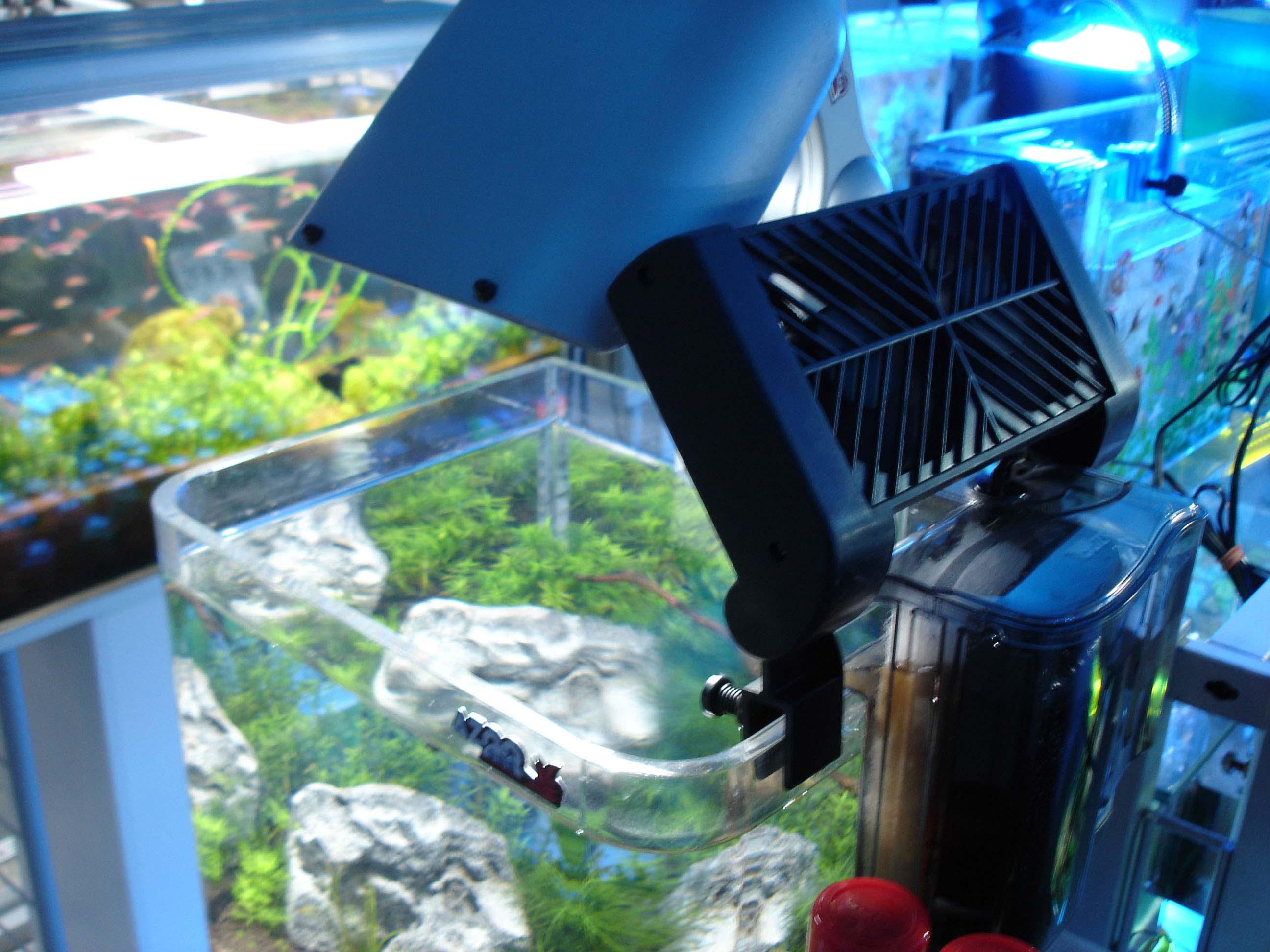 Aquarium fish tank cooling fan - Every Aquarium Needs A Fan